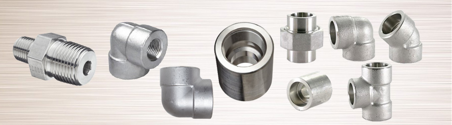 Difference Between Stainless Steel 304 and 316 Forge Fitting